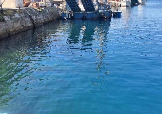 Nafta u moru