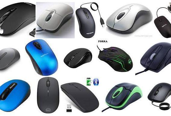 Zašto je miš baš nazvan miš?